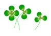 leaf-illust